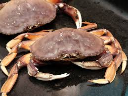 Looks Like You Will Have to Get Your Crabs in Boston Like the Rest of Us. Maybe Baltimore?