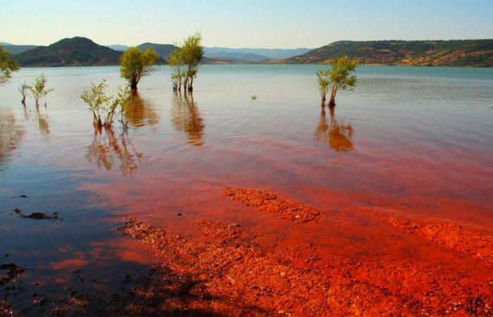 Red Tide – Coming to a Theatre Near You